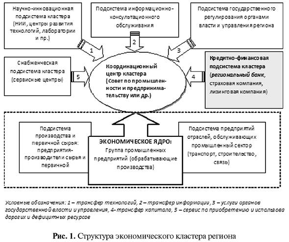 Структура экономического кластера региона